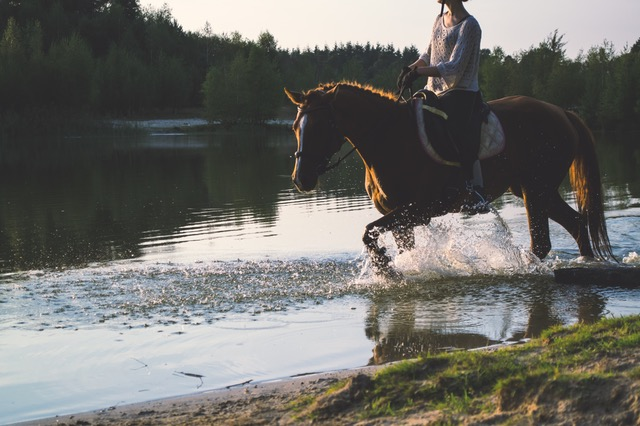 Trail riding can be a fun holiday weekend activity!