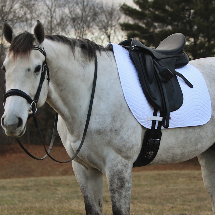 Dressage Saddle Pad white on horse