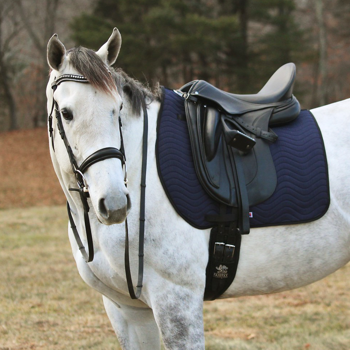 Dressage saddle Pad navy web on Saint