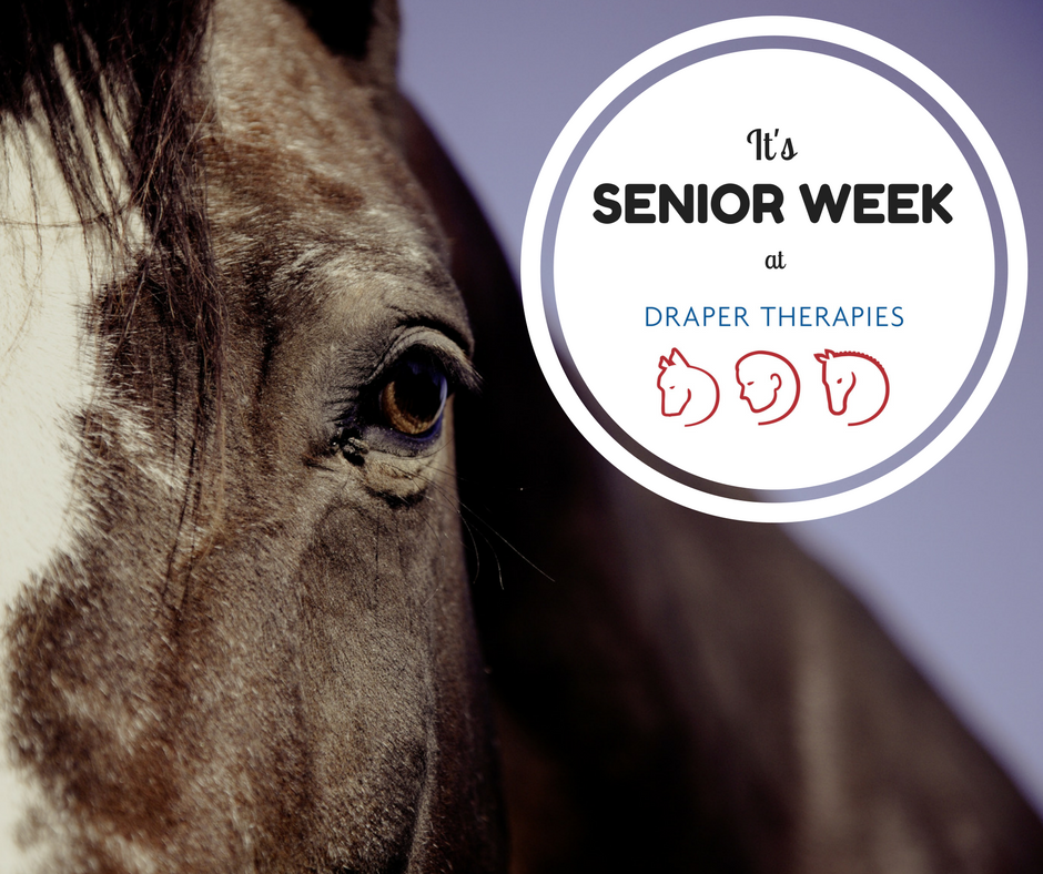 It's Senior Week at Draper Therapies!