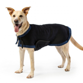 Draper Canine Therapy Dog Coat on Model